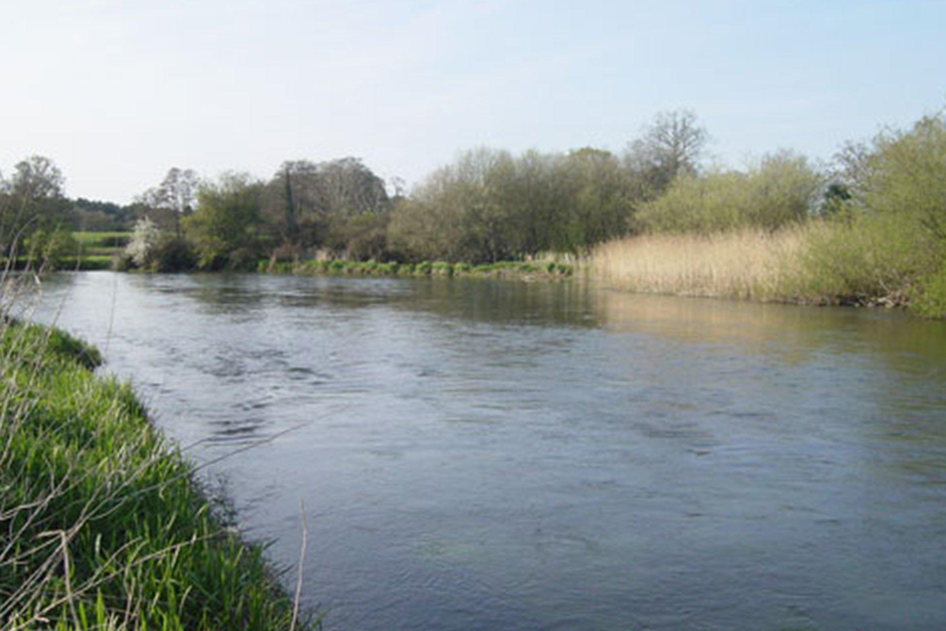 Lower Severals Amp Avon Castle Avon River Fishing