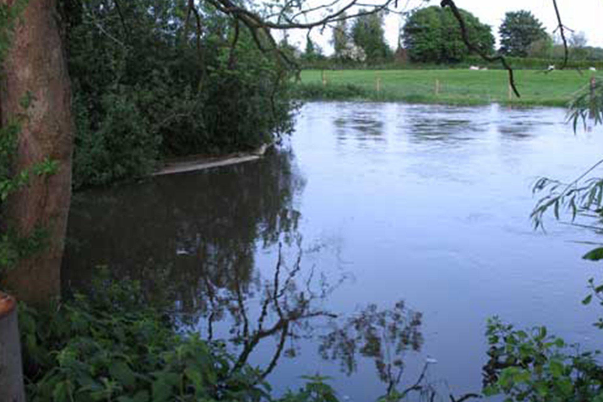Manor Farm Hampreston Fishing